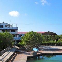 Отель Coral View Beach Resort Гондурас, Остров Утила - отзывы, цены и фото номеров - забронировать отель Coral View Beach Resort онлайн приотельная территория фото 2