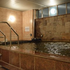 Asakusa Central Hotel бассейн фото 3