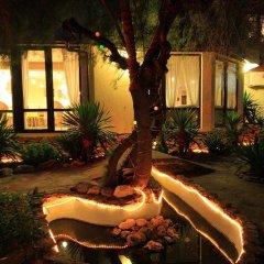 Отель Coral Болгария, Аврен - отзывы, цены и фото номеров - забронировать отель Coral онлайн фото 4