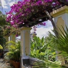 Отель Quinta Bela Sao Tiago Португалия, Фуншал - отзывы, цены и фото номеров - забронировать отель Quinta Bela Sao Tiago онлайн фото 6