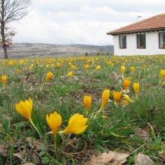 Отель Energy Guest House Болгария, Боженци - отзывы, цены и фото номеров - забронировать отель Energy Guest House онлайн фото 3