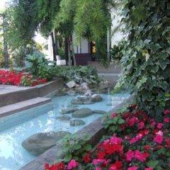 Отель Stella Италия, Риччоне - отзывы, цены и фото номеров - забронировать отель Stella онлайн бассейн фото 2