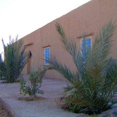 Отель Auberge Africa Марокко, Мерзуга - отзывы, цены и фото номеров - забронировать отель Auberge Africa онлайн фитнесс-зал