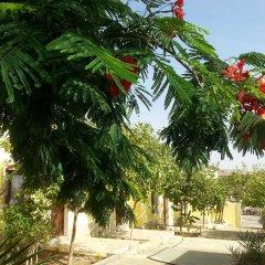 Darna Village Beach Hostel фото 10
