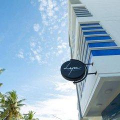 Отель Whiteharp Beach Inn Мальдивы, Мале - отзывы, цены и фото номеров - забронировать отель Whiteharp Beach Inn онлайн фото 21