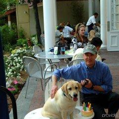 Hotel Indigo Atlanta Midtown с домашними животными