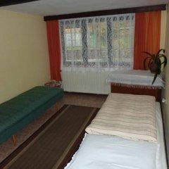 Отель Penzion U Doubku Карловы Вары комната для гостей фото 2