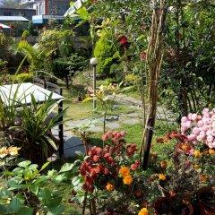 Отель Orchid Непал, Покхара - отзывы, цены и фото номеров - забронировать отель Orchid онлайн фото 12