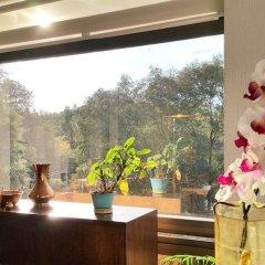 Отель Private Sanctuary Del Valle Мексика, Мехико - отзывы, цены и фото номеров - забронировать отель Private Sanctuary Del Valle онлайн интерьер отеля фото 2