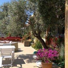 Mediteran Hotel Турция, Калкан - отзывы, цены и фото номеров - забронировать отель Mediteran Hotel онлайн фото 7