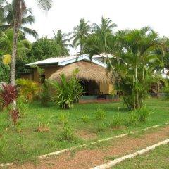 Отель Mangrove Villa Шри-Ланка, Бентота - отзывы, цены и фото номеров - забронировать отель Mangrove Villa онлайн фото 4