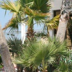 Hotel Reymar Playa фото 3