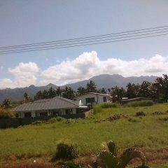 Отель Island Accommodation Nadi Фиджи, Вити-Леву - отзывы, цены и фото номеров - забронировать отель Island Accommodation Nadi онлайн фото 3