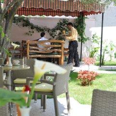 Отель Theranda Албания, Тирана - отзывы, цены и фото номеров - забронировать отель Theranda онлайн фото 13