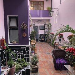Отель Olga Querida B&B Hostal Мексика, Гвадалахара - отзывы, цены и фото номеров - забронировать отель Olga Querida B&B Hostal онлайн фото 11