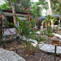 Hotel Jaguar Inn Tikal фото 16