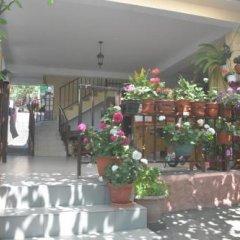 Гостиница Azanta Guest House