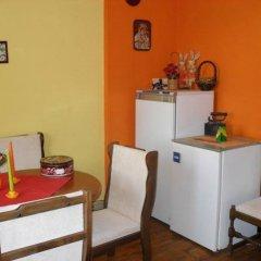 Отель Iundova Guest House Болгария, Боровец - отзывы, цены и фото номеров - забронировать отель Iundova Guest House онлайн удобства в номере