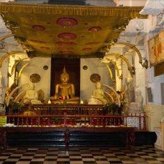 Отель Bentota Village Шри-Ланка, Бентота - отзывы, цены и фото номеров - забронировать отель Bentota Village онлайн фото 7