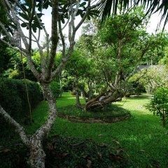 Отель Mae Nai Gardens фото 12