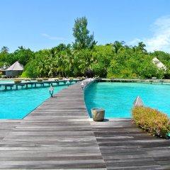 Отель Gangehi Island Resort бассейн