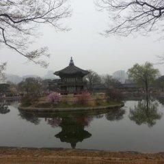 Отель Dajayon Hanok Stay Южная Корея, Сеул - отзывы, цены и фото номеров - забронировать отель Dajayon Hanok Stay онлайн приотельная территория