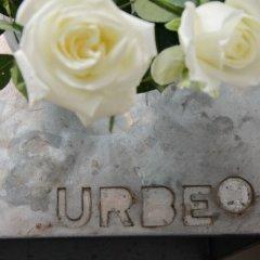 Отель Urben Suites Apartment Design Италия, Рим - 1 отзыв об отеле, цены и фото номеров - забронировать отель Urben Suites Apartment Design онлайн питание