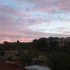 Отель Town of Nebo Hotel Иордания, Аль-Джиза - отзывы, цены и фото номеров - забронировать отель Town of Nebo Hotel онлайн фото 10