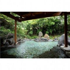 Отель Shikinosato HANAMURA Япония, Минамиогуни - отзывы, цены и фото номеров - забронировать отель Shikinosato HANAMURA онлайн бассейн