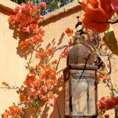 Отель Dar El Kharaz Марокко, Марракеш - отзывы, цены и фото номеров - забронировать отель Dar El Kharaz онлайн фото 10