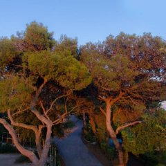 Отель Camping Al Bosco Италия, Градо - отзывы, цены и фото номеров - забронировать отель Camping Al Bosco онлайн приотельная территория