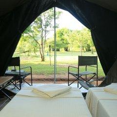 Отель Big Game Camp Yala Шри-Ланка, Катарагама - отзывы, цены и фото номеров - забронировать отель Big Game Camp Yala онлайн комната для гостей фото 2