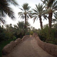 Отель AppartHotel Khris Palace Марокко, Уарзазат - отзывы, цены и фото номеров - забронировать отель AppartHotel Khris Palace онлайн пляж