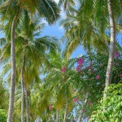 Отель Banyan Tree Vabbinfaru Мальдивы, Северный атолл Мале - отзывы, цены и фото номеров - забронировать отель Banyan Tree Vabbinfaru онлайн