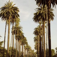 Отель London West Hollywood at Beverly Hills фото 4