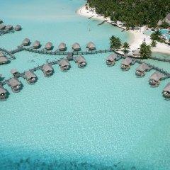 Отель Bora Bora Pearl Beach Resort Французская Полинезия, Бора-Бора - отзывы, цены и фото номеров - забронировать отель Bora Bora Pearl Beach Resort онлайн бассейн фото 3