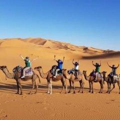 Отель Desert Camel Camp Марокко, Мерзуга - отзывы, цены и фото номеров - забронировать отель Desert Camel Camp онлайн фитнесс-зал фото 2