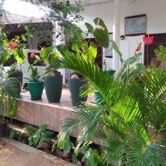 Отель Sanoga Holiday Resort Шри-Ланка, Тиссамахарама - отзывы, цены и фото номеров - забронировать отель Sanoga Holiday Resort онлайн помещение для мероприятий