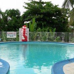 Отель Palm View Guest House бассейн фото 3