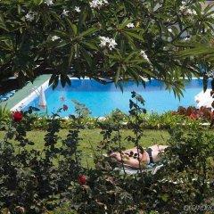 Отель Dorisol Mimosa Hotel Португалия, Фуншал - отзывы, цены и фото номеров - забронировать отель Dorisol Mimosa Hotel онлайн