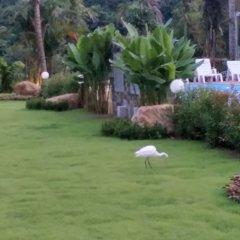 Отель Lanta Infinity Resort Ланта фото 2