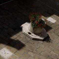 Отель Al Codega Италия, Венеция - 9 отзывов об отеле, цены и фото номеров - забронировать отель Al Codega онлайн приотельная территория