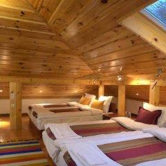 Отель Dragneva Guest House Болгария, Чепеларе - отзывы, цены и фото номеров - забронировать отель Dragneva Guest House онлайн комната для гостей фото 2
