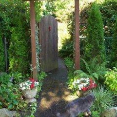 Отель Kitsilano Garden Suites Канада, Ванкувер - отзывы, цены и фото номеров - забронировать отель Kitsilano Garden Suites онлайн фото 4