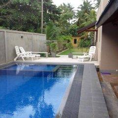 Отель Villa 61 Шри-Ланка, Берувела - отзывы, цены и фото номеров - забронировать отель Villa 61 онлайн бассейн