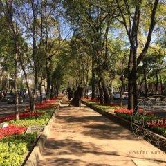 Отель CDMX Hostel Art Gallery Мексика, Мехико - отзывы, цены и фото номеров - забронировать отель CDMX Hostel Art Gallery онлайн фото 5