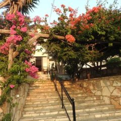 Hill View Restaurant & Apartments in Pissouri, Cyprus from 109$, photos, reviews - zenhotels.com photo 7