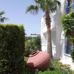 Kefalonitis Hotel Apartments фото 12