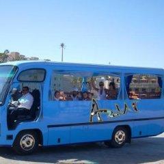 Отель Albatros Citadel Resort городской автобус
