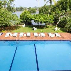Отель Waterside Bentota Шри-Ланка, Бентота - отзывы, цены и фото номеров - забронировать отель Waterside Bentota онлайн бассейн